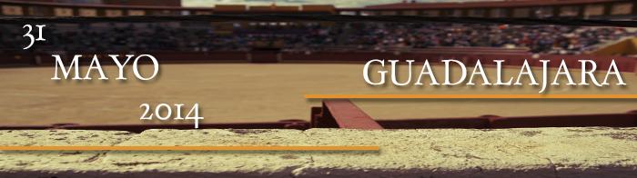 NOVILLADA PLAZA DE LAS CRUCES (GUADALAJARA) MAYO 2014