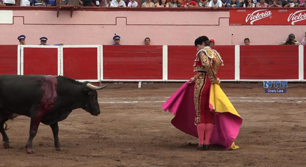 NOVILLADA AGUASCALIENTES (MÉXICO) 29 MARZO 2015