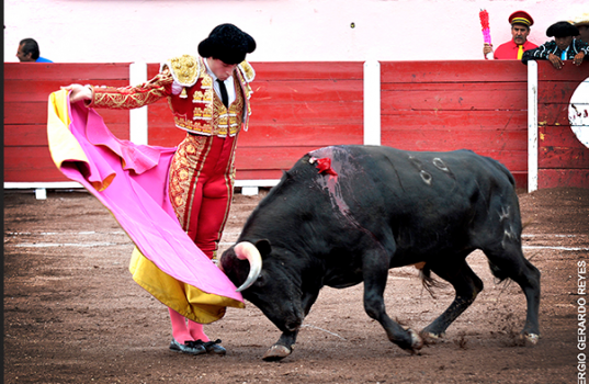 Curro de la Casa aun sin trofeos, cae de pie en la San Marcos  En Aguascalientes